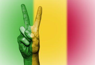 Mali : la résolution de la crise ne passera pas que par les fusils
