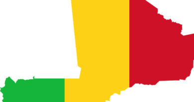 Mali : une souscription nationale pour pallier l'arrêt brutal de la perfusion internationale ?